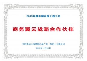 中国电信战略合作伙伴